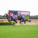 Unite And Conquer wins Wyong Magic Millions