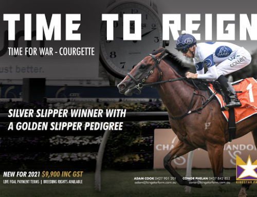 KINGSTAR SECURE 2YO SPPED SENSATION TIME TO REIGN
